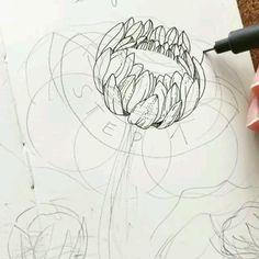 Flower Drawing Tutorials, Flower Art Drawing, Botanical Line Drawing, Floral Drawing, Botanical Drawings, Botanical Art, Art Tutorials, Painting & Drawing, Flower Sketch Pencil