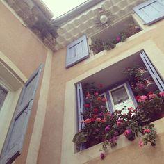 bliss blog - bonjour...parttwo