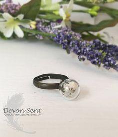 Devon dreams ring terrarium dandelion ring real plant
