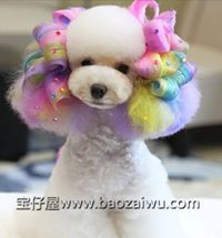 -repinned- More creative dog grooming. 'work by Laily Azhade Abulitifu of China'