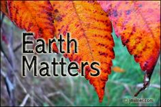 Happy Thanksgiving everyone.   http://cornwallfreenews.com/2012/10/earth-matters-by-jacqueline-milner-fall-colours-foods-october-5-2012/