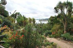 Résultats du concours photos Mon Finistère, édition 2012 Jardin exotique de Roscoff août 2011  Participant : Yannick L. | Finistère Tourisme