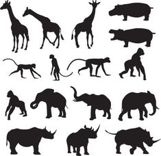 An assortment of African, wild animals. Africa Silhouette, Animal Silhouette, Silhouette Art, African Animals, African Safari, African Art, Mode Safari, Animal Outline, Animal Cutouts