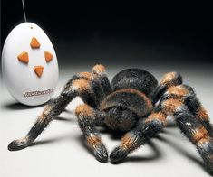 Scare the life out of your fellow arachnophobe friends with this remote control tarantula with light up spider eyes. This 1:1 scale R/C spider has a furry texture as well as independent leg movement to seem even more like it's real life counter part.