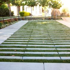 SmartStone manufactures and supplies Permeable Paving Grassblocks, to combine the benefits of paving and vegetation. Available at most SmartStone branches. Diy Driveway, Driveway Design, Driveway Ideas, Urban Landscape, Landscape Design, Outdoor Rooms, Outdoor Living, Persian Garden, Water Management