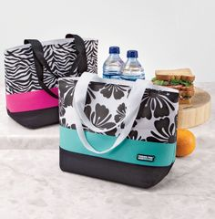 A healthy lunch starts with a cute lunch box! #shopko