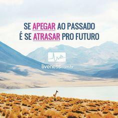 liveness.com.br #liveness