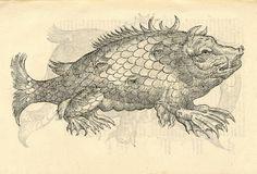 Monstrosus sur marinus. From: Ulissi ALDROVANDI [ALDROVANDUS]. Monstrorum historia, 1642.