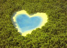 love,fdfssdfs,love,island,heart,nature-cafca270cb67ba4df8f95bab3282bcda_h