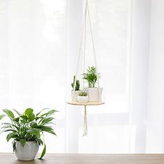 Garden Supplies Collection Here Macrame Plant Hangers,large Indoor Outdoor Wall Hanging Planter Basket Flower Pot Holder,boho Home Decor 4-in-1 In Different D High Quality Materials