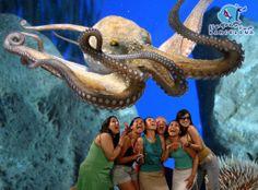 aquarium barcelona | transfers Reus y Barcelona | excursiones y lineas regulares en la ...