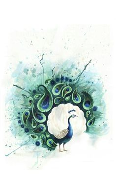 This would make a really neat peacock watercolor tattoo.