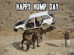 Happy Wednesday! Maybe they should have gone with DIA Recovery instead... www.driving.org/recovery