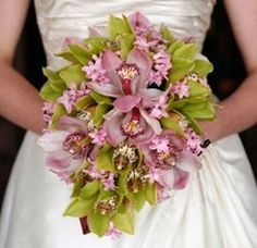 Flowers and their meanings. Orchids mean love and beauty.