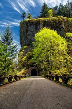 Oneonta Tunnel, Columbia Gorge, Oregon