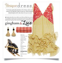 """""""Unique Dress / Gingham & Lace"""" by conch-lady ❤ liked on Polyvore featuring MSGM, Manolo Blahnik, Nancy Gonzalez, Lizzie Fortunato, ginghamdress, uniquedress and ginghamandlace"""