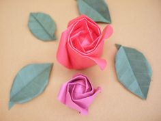 standard rose @ bloomize.com