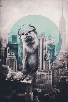 I love otters!