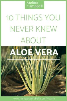 10 things you never knew about aloe vera and its benefits on your health and wellbeing.