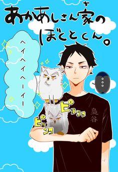 Bokuto X Akaashi, Its Ya Boy, Haikyuu Yaoi, Bokuaka, Karasuno, Kuroko, Hinata, My Children, Comic Strips