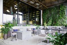Los Angeles American Tea Room