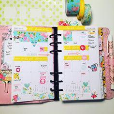 Monthly view in my personal planner  #llamalove #pgw #plannergirl #planneraddict #plannerlove #plannercommunity #plannerstickers  #Planner #planning #planners #plannerstickers #agenda #plannerdecor #plannernerd #plannerlove #planneraddict #plannercommunity #stationery #organization #stationeryaddict #erincondren #eclp #happyplanner #plannerclips #plannerclipaddict #kikkik #colorcrushinserts #theplannersocietykit