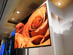 CES round-up: Thin is in for 2012 | Tech firms usually boast about power or pixels, but this year at CES they sounded more like supermodels who haven't eaten anything but air for six months. Buying advice from the leading technology site