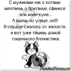 Комментарий к изображению Funny Expressions, Just Smile, Good Thoughts, Man Humor, Funny Jokes, Best Quotes, Quotations, Poems, Positivity