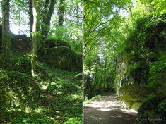 Die Raumfee: Die Geschichte vom verzauberten Wald, verhagelten Falken, einem Kasperltheater in der Höhle und einer großen Burg.