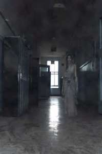 Image Search Results for paranormal photos of ghosts haunting a house