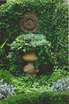 urn with succulents and wall of ivy with iron medallion