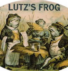 Lutz's frog cigar box label Vintage Labels, Vintage Ephemera, Vintage Paper, Vintage Ads, Vintage Posters, Cigar Box Art, Vintage Cigar Box, Cigar Boxes, Frog Illustration