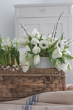 VIBEKE DESIGN: Vårlig blomsterglede !