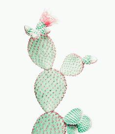 Cactus Print Nursery wall art prints Cactus Art by TaiPrints