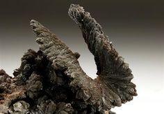Descloizite, PbZn(VO4)(OH), Namibia