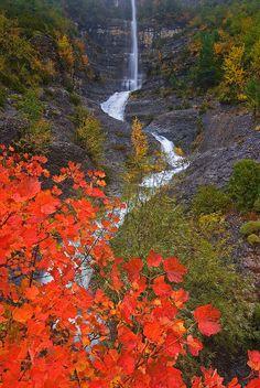 """""""Cosecha roja"""" - Fall in Ordesa, Spain from fotonatura.org. Beautiful World, Day 267."""