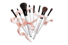 Dianne Brill brushes when you want to bring in brushes who know who is the boss ! total control feather soft x Be The Boss, Brushes, Feather, Bring It On, Website, Beauty, Deutsch, Nice Asses, Beleza