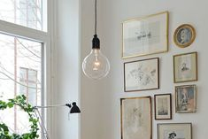 Lichterloh - Another! Trends, Gallery Wall, Frame, Home Decor, Style, Backyard Landscaping, Deko, Homes, Pictures