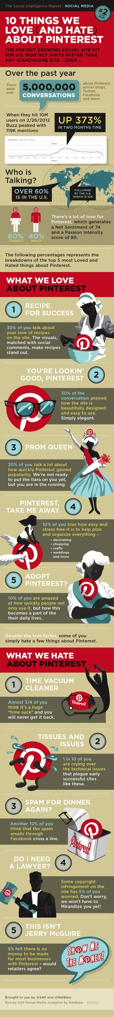 The Interest In Pinterest: The Ten Things We Love (and Hate) Infographic