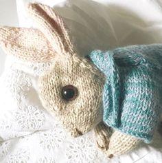 Peter Rabbit Knitting pattern by Dot Pebbles Knitting Kits, Arm Knitting, Christmas Knitting Patterns, Knit Patterns, Animal Patterns, Peter Rabbit, Instagram Gallery, Betty Boo, Dou Dou
