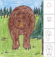How to Draw a Grizzly Bear~  Great step-by-step directions using a symmetrical design that makes it easier for beginning drawers.