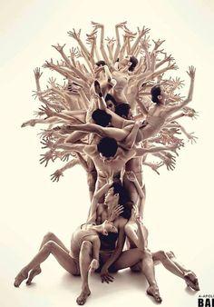 New Georgian Ballet. El árbol de la vida se ha usado no solo en la mitología egipcia sino en muchas religiones y mitologías. Conecta cielo y tierra, vida y muerte. Éste es espectacular...  anafernandezruiz.com