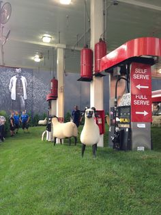 Rolling grassy hills & sheep in gas station, Chelsea NYC