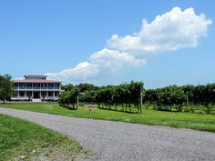 Postcards from Cape May- Willow Creek Winery- Boston Chic Party
