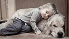 Why all young children need a dog.