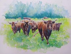 Watercolour painting - Brown Cows in a summer field by WatercoloursForSale on Etsy Cow Paintings On Canvas, Farm Paintings, Animal Paintings, Highland Cow Painting, Highland Cow Art, Cow Photos, Cow Pictures, Cow Wall Art, Farm Art