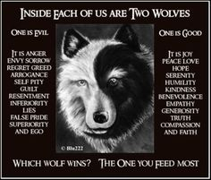 """It is a terrible fight between 2 wolves. One is evil - anger, envy, sorrow, regret, greed, arrogance, self-pity, guilt, resentment, inferiority, lies, false pride, superiority, and ego."" ""The other is good - joy, peace, love, hope, serenity, humility, kindness, benevolence, empathy, generosity, truth, compassion, and faith. The same fight is going on inside you ..""  The grandson thought about it for a minute and then asked, ""Which wolf will win?""  The old Cherokee replied, ""The one you…"