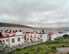 Two Million Homes for Mexico, Livia Corona
