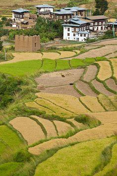 Pastoral village in Bhutan