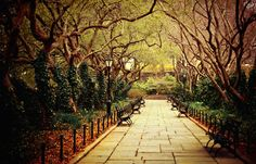 The Urban Forest Primeval - Conservatory Garden in Central Park - #photography #newyorkcity #nyc #manhattan #city #park #nature